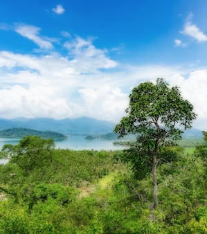 Vista dell'isola tropicale