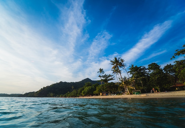 Vista della bellissima spiaggia tropicale con palme.