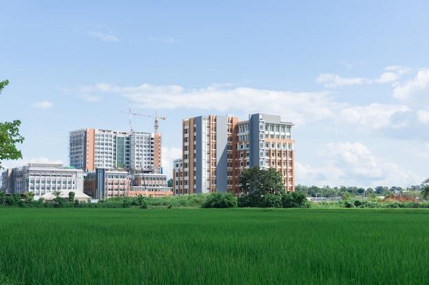 Vista della costruzione del sito di costruzione tra campo di riso, edificio ospedaliero.