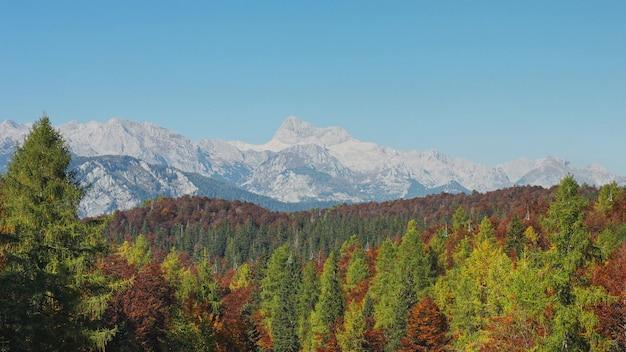 Vista della gamma alpina delle rocce della foresta e della montagna di autunno. 4k footag
