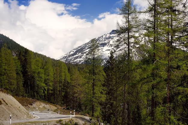 Vista della strada attraverso il parco nazionale svizzero nel giorno di primavera soleggiata. luoghi panoramici della svizzera.