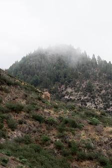 Vista di angolo basso del picco di montagna nebbioso