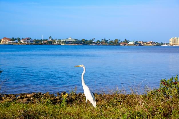 Vista di florida florida marco island florida stati uniti