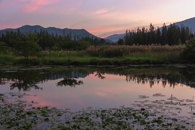 Vista di tramonto dei picchi di montagna con la riflessione nella palude nella penombra