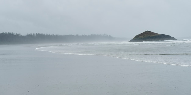 Vista di una spiaggia, long beach, pacific rim national park reserve, isola di vancouver, tofino, british co
