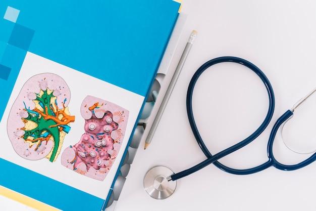 Vista elevata dei libri; matita e stetoscopio su sfondo bianco