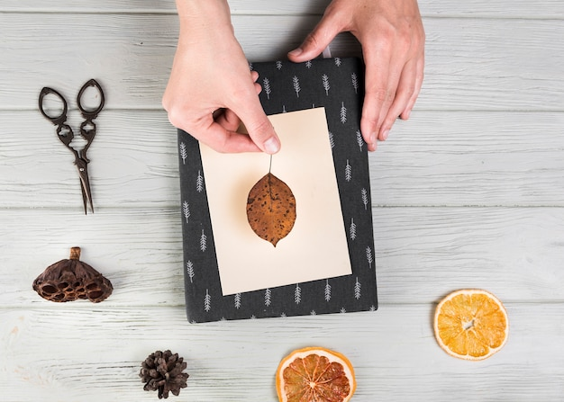 Vista elevata della mano che fa biglietto di auguri con foglia secca; pigna; fetta di agrumi e baccello di loto sul tavolo