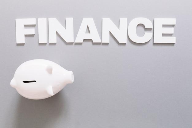 Vista elevata della parola e del porcellino salvadanaio bianchi di finanza su fondo grigio