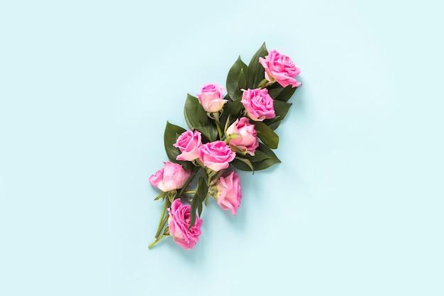 Vista elevata di belle rose su sfondo blu