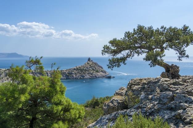 Vista estiva della costa della crimea. la vista dalle montagne sul novyi svet
