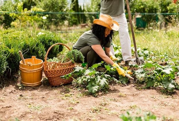 Vista frontale donna prendersi cura del raccolto