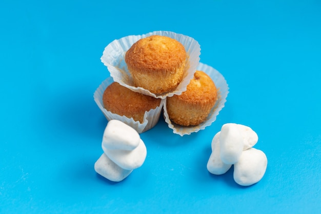 Vista frontale piccoli deliziosi dolci isolati su sfondo blu