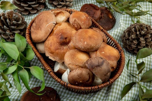 Vista laterale dei funghi freschi in un cestino di vimini e coni con foglie verdi su tessuto plaid