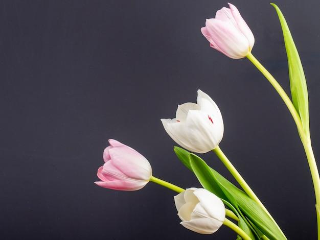Vista laterale dei tulipani bianchi e rosa di colore isolati sulla tavola nera con lo spazio della copia