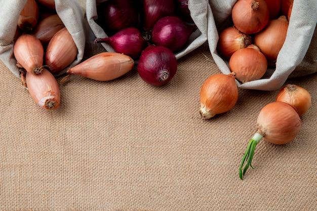 Vista laterale delle diverse cipolle che si rovesciano dai sacchi sulla superficie della tela di sacco con lo spazio della copia