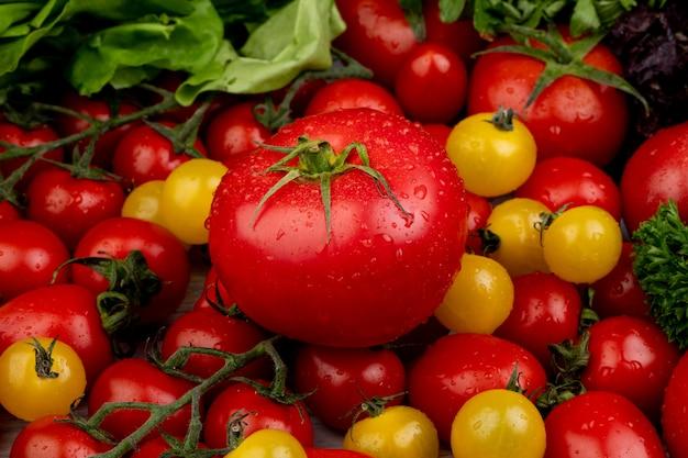 Vista laterale delle verdure come coriandolo e pomodori degli spinaci