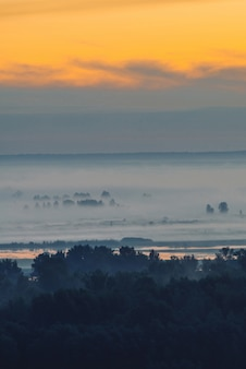 Vista mistica sulla foresta sotto foschia al mattino presto. nebbia tra sagome di alberi sotto il cielo predawn. riflessione della luce d'oro in acqua.