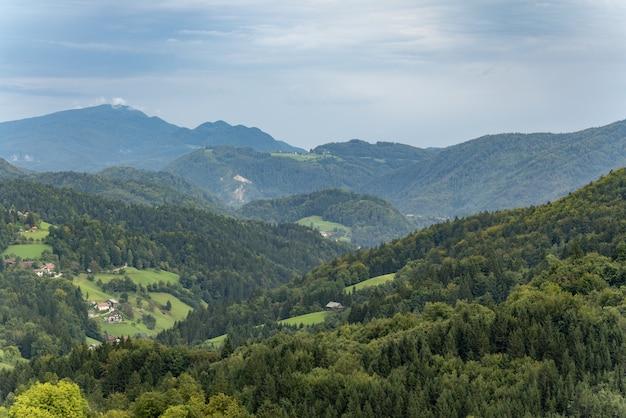 Vista mozzafiato sulle montagne coperte di alberi sotto il bel cielo blu