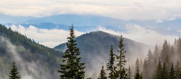 Vista panoramica delle montagne carpatiche nebbiose con le nuvole basse