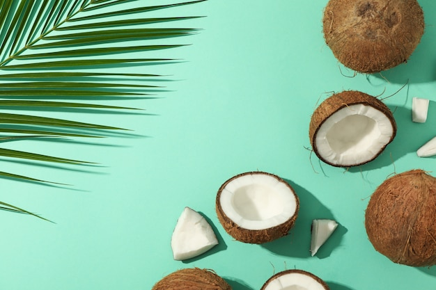 Vista piana con ramo di cocco e palma