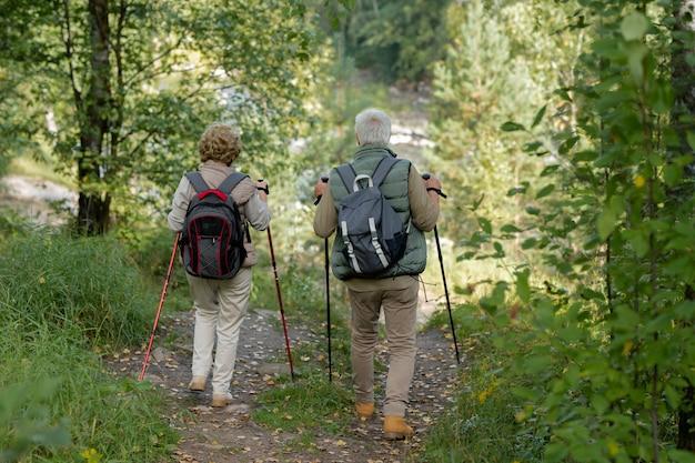 Vista posteriore dell'uomo maturo attivo e della donna con i bastoni da trekking che si muovono lungo il sentiero nel bosco tra alberi verdi e cespugli