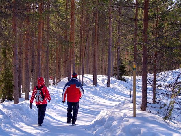 Vista posteriore di due turisti che camminano nella foresta nevosa
