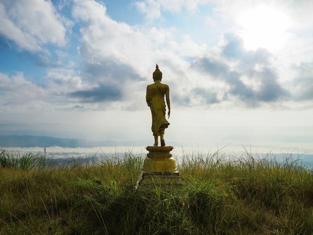 Vista posteriore di grande statua dorata del buddha sulla cima della montagna
