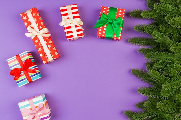 Vista superiore del contenitore di regalo e dei rami di abete su variopinto.