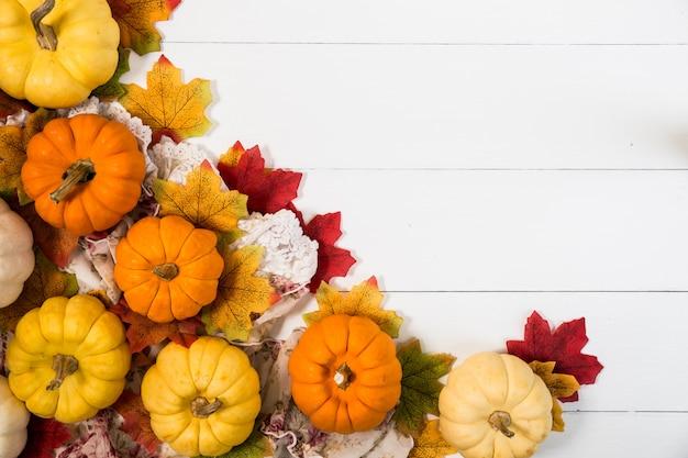 Vista superiore del giorno di halloween o del giorno del ringraziamento, zucche, foglie di acero e pigna su fondo bianco con lo spazio della copia