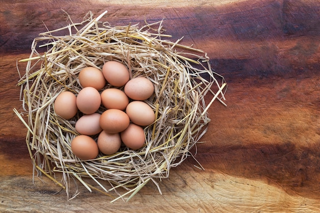 Vista superiore del pollo, uova di pasqua nel nido su un tavolo di legno, immagine con lo spazio della copia.