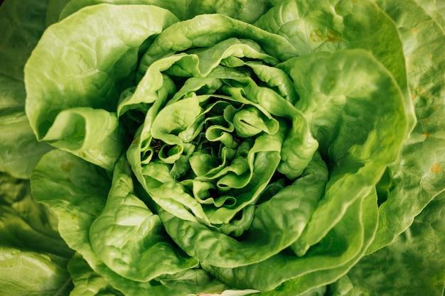 Vista superiore del primo piano di insalata verde fresca