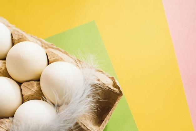 Vista superiore delle uova bianche del pollo con la piuma in un cartone aperto dell'uovo su fondo variopinto. copia spazio. cibo sano naturale e concetto di agricoltura biologica. uova in confezione