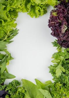 Vista superiore delle verdure verdi come basilico della lattuga alla menta del coriandolo su bianco con lo spazio della copia