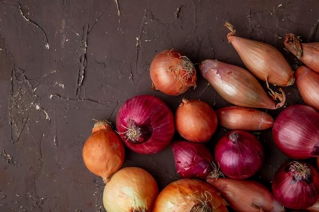 Vista superiore di cipolle rosse e scalogno gialle dolci su fondo marrone rossiccio con lo spazio della copia