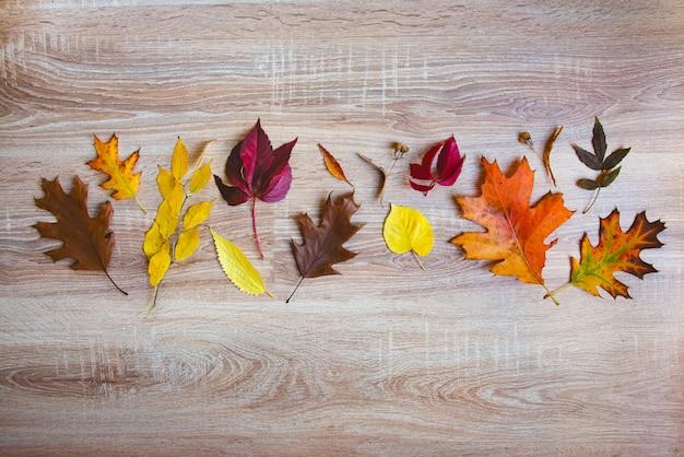 Vista superiore di vari frutti e foglie variopinti di autunno in un canestro di vimini sopra la tavola di legno. copia spazio.
