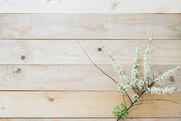 Vista superiore sullo spirea di fioritura del ramo del fondo di legno