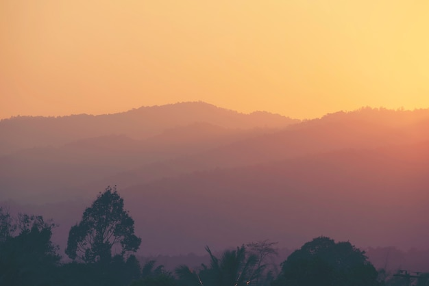 Vista tropicale della priorità bassa della foresta, priorità bassa della natura