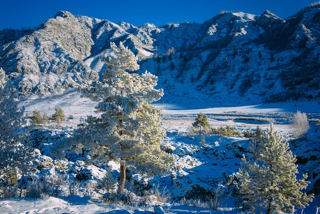 Viste mozzafiato sulla catena montuosa racconto natalizio nelle alpi