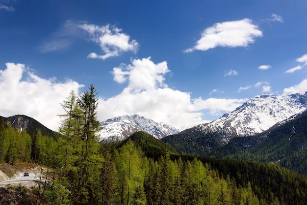 Viste panoramiche del parco nazionale svizzero con una strada in giornata di sole primaverile.