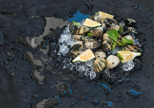 Vongole crude fresche con limone, erbe e spezie su ghiaccio scheggiato su fondale scuro di pietra ardesia