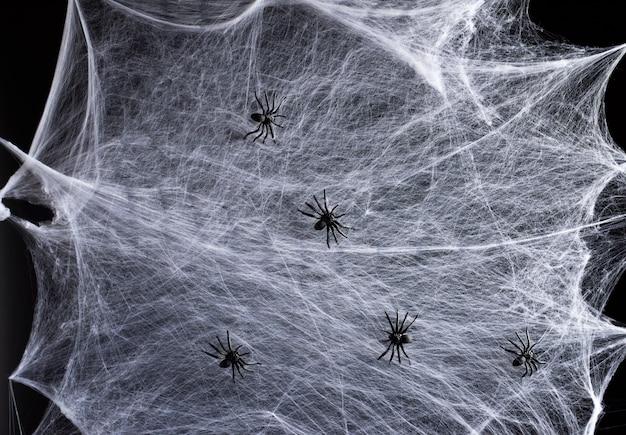 Web bianco allungato e ragni di plastica neri