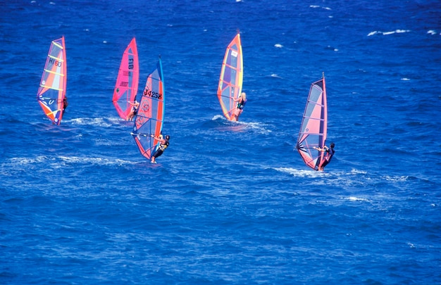 Windsurfers in acqua, paia, maui, hawaii