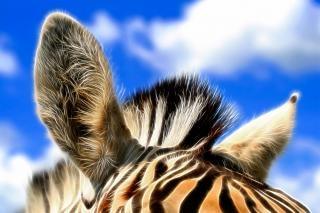 Zebra orecchie astratto