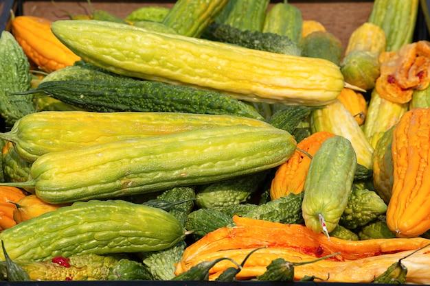 Zucca amara con stoccaggio di semi gialli per la coltivazione.