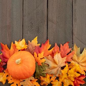 Zucca arancio sulle foglie variopinte con lo spazio della copia