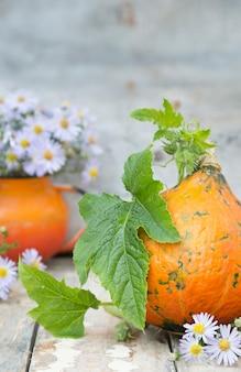Zucca con foglie e fiori