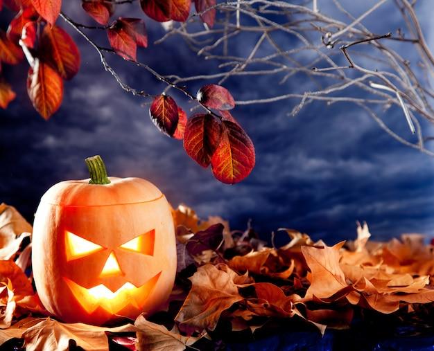 Zucca della lanterna di halloween in nuvole scure del cielo