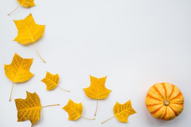 Zucca di autunno e foglie di caduta su fondo bianco