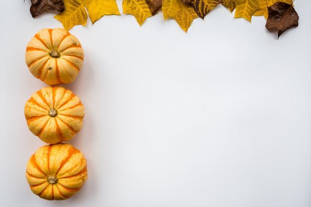 Zucca di autunno e foglie di caduta sulla struttura bianca del fondo