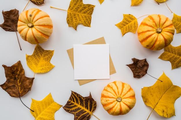 Zucca di autunno, spazio in bianco di carta e foglie di caduta